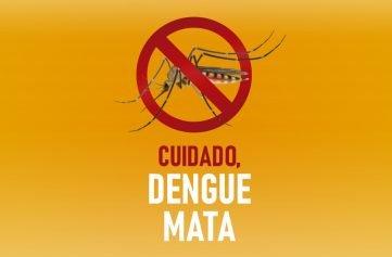 capa blog dengue